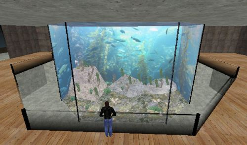 Kelp TankBalcony